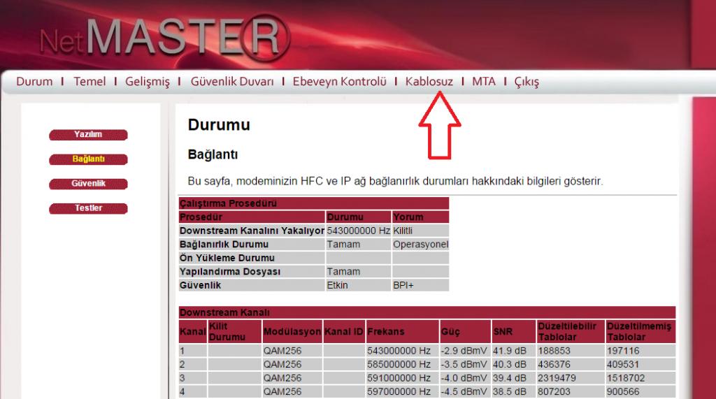 netmaster_giris