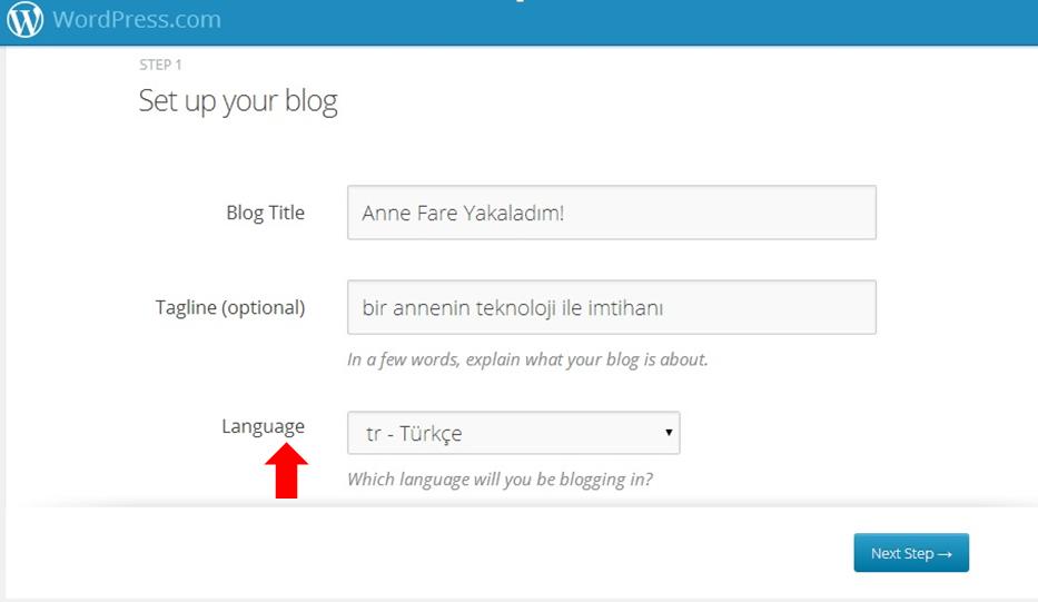 blogspottan wordpress'e geçiş