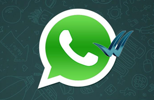 whatsapp logo, blue check vector