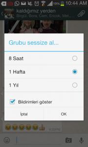 whatsapp-grubsessize-alma